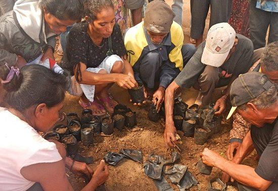 Osttimor/East Timor